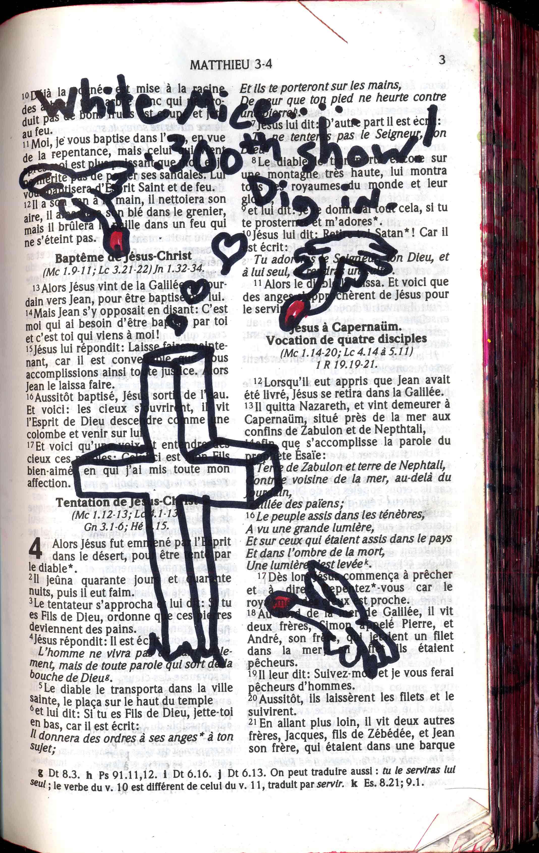 bible-80